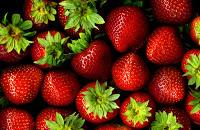 fraise holifit