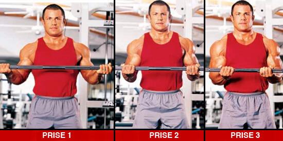 biceps_prise